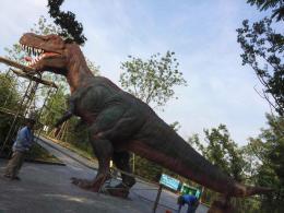 济南野生动物世界雕塑维护